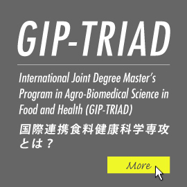 What is the Global Innovation Joint-Degree Program (International Joint Degree Master's Program in Agro-Biomedical Science in Food and Health; common name is GIP-TRIAD) ?